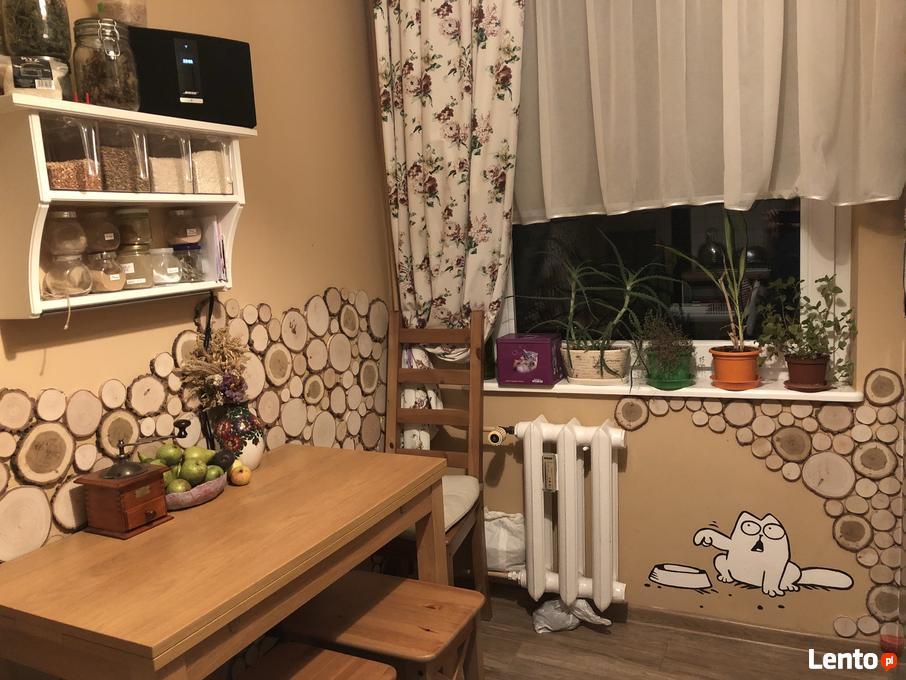 Plaster Krazki Drewna Na Sciane Panel Plastry Drewna Stryszawa