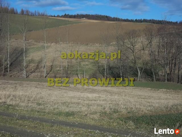 Widokowa działka rolno budowlana 52ar, Grudna Górna, Dębica