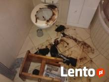 Sprzątanie mieszkań po zgonie dezynfekcja-Vector