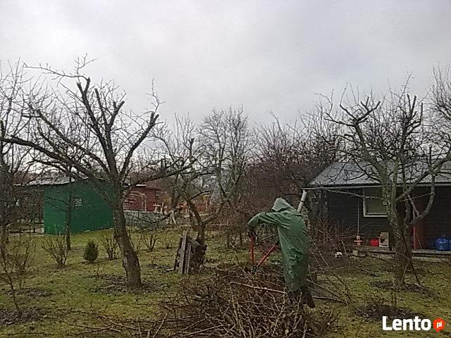 Usługi wycinania drzew-wywóz gałęzi-sprzątanie ogrodów