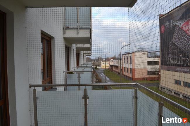 Siatka Dla Kota Siatka Na Balkon Poznań Poznań