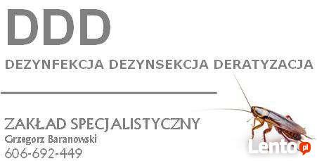 Zakład DDD - Dezynfekcja Dezynsekcja Deratyzacja Kędzierzyn
