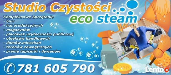 Studio Czystości ECO STEAM/pranie tapicerki dywanów