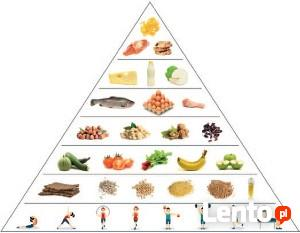 Kurs dietetyka i odchudzanie