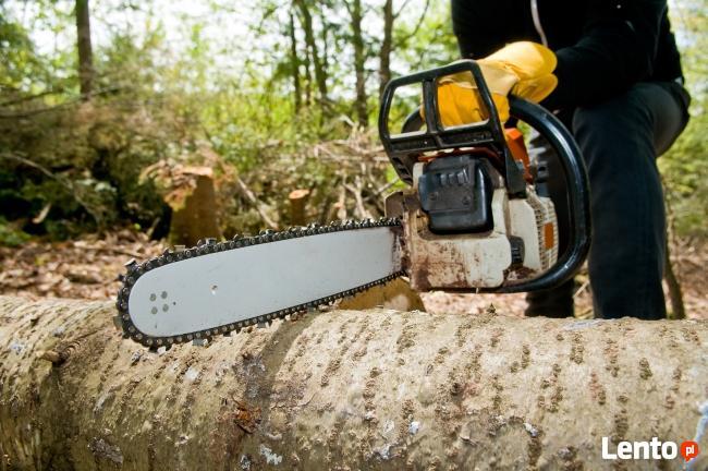 Wycinanie drzew,wycinka drzew,Wisła,Ustroń,Brenna,Skoczów,