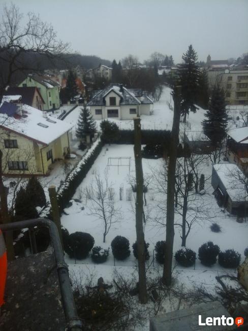 Wycinka drzew Lublin,Lubartów,Łęczna