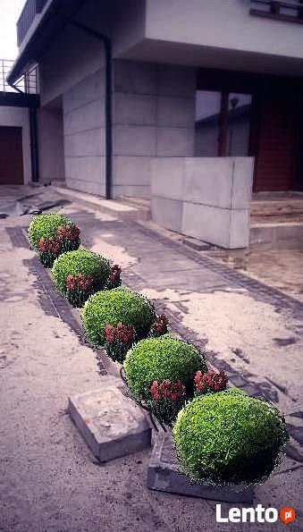 Trawniki, System nawadniajacy, projektowanie ogrodow