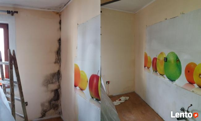 osuszanie, ozonowanie, odgrzybianie murów, usuwanie pleśni