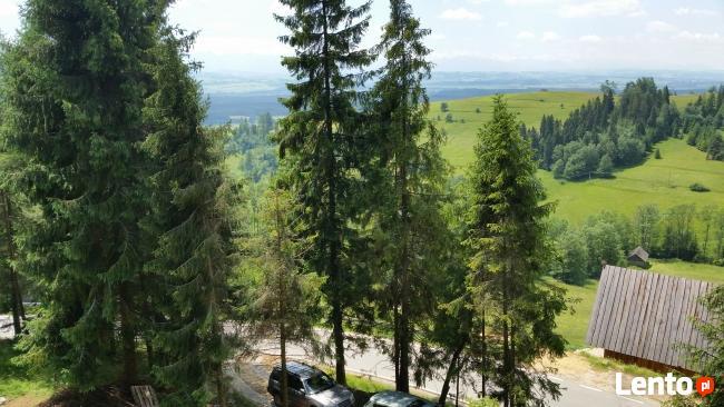 Stanleyówka  w górach nad jeziorem czorsztyn białka 10km