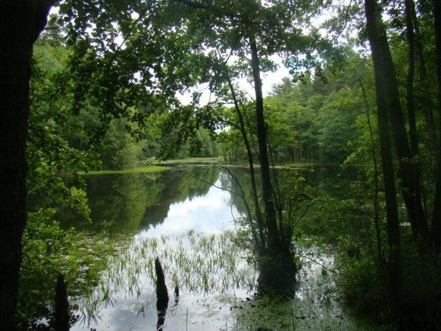 Spływy kajakowe, agroturystyka