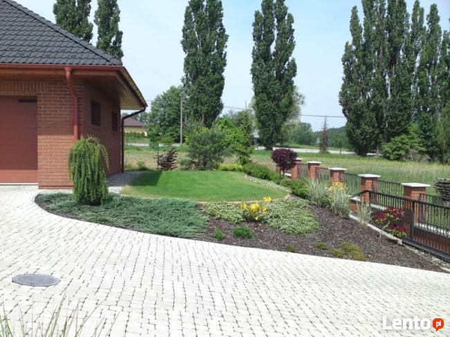Firma ogrodnicza ogrody gardens usługi ogrodnicze trawniki