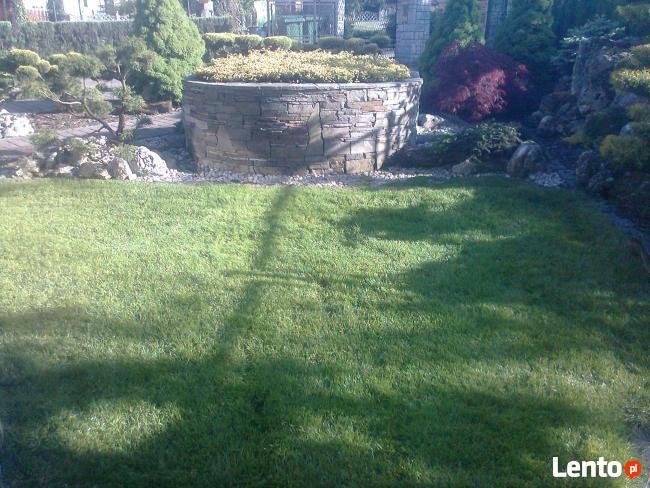 OGRODNIK ,ogrodnictwo,usługi ogrodnicze ,pielęgnacja zieleni