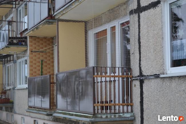 Siatka Dla Kota Siatka Na Balkon Kalisz