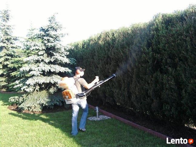 Pielęgnacja ogrodów, wycinki i przycinanie drzew i krzewów
