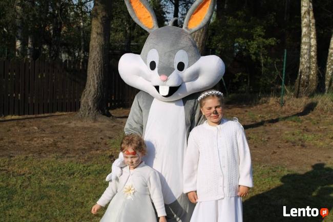 Zając Wielkanocny na wynajem - atrakcje na wielkanoc