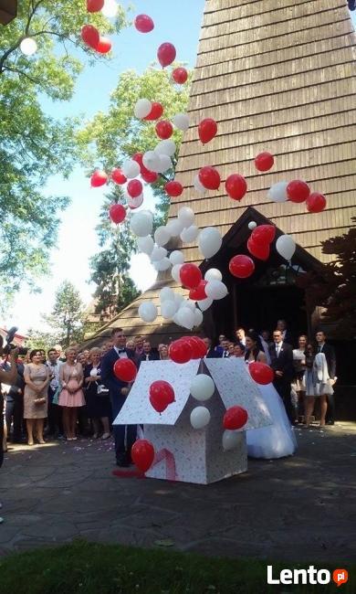 Myszka Miki Minnie na wesele urodziny dla dziecka! Atrakcja