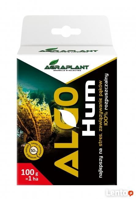 AlgoHumus 100g - proszek 100% rozpuszczalny