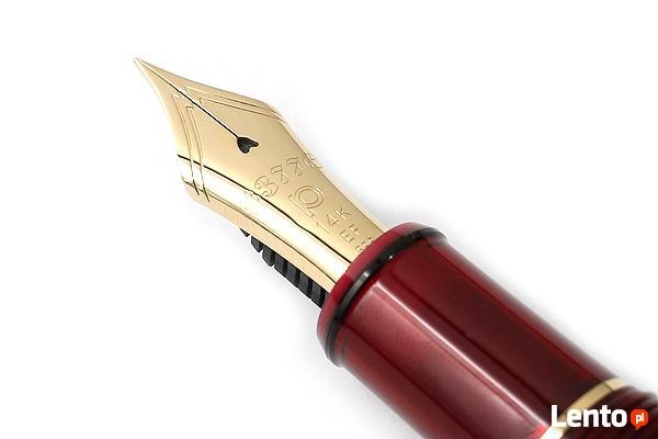 Doktorantka oferuje swoją pomoc przy pisaniu...