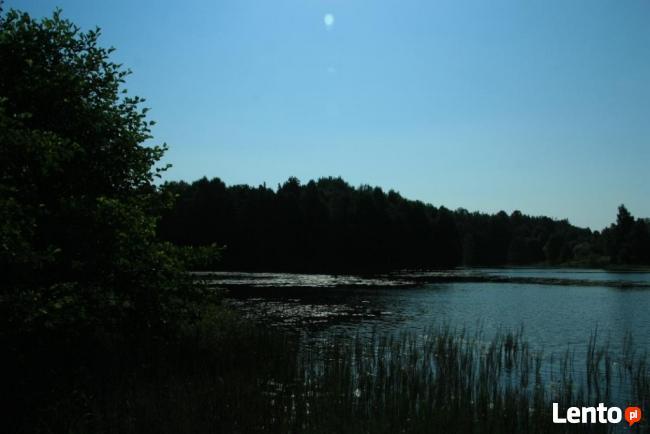 Randki w lesie nad jeziorem