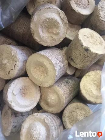 Brykiet drzewny / trocina sosnowo dębowa / magazynowany Eko