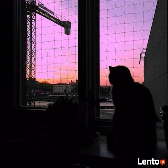 Siatka balkonowa dla kota. Montaż.