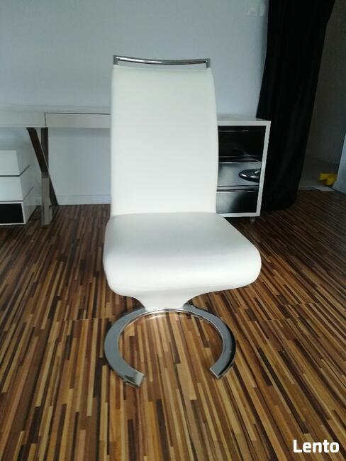 Krzesła (6 szt.) do salonu lub jadalni