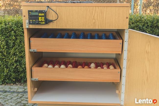 inkubator wylegarka do drobiu
