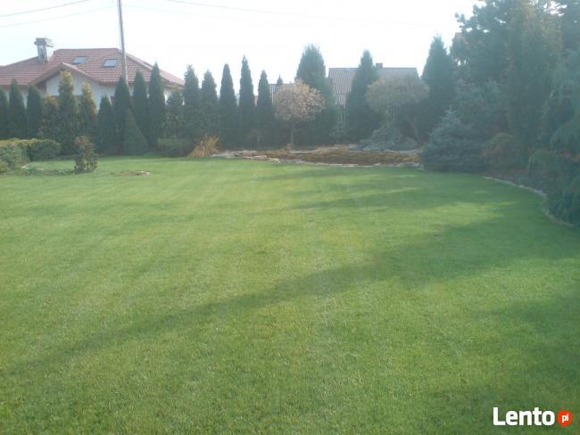 OGRODY-Zakładanie Ogrodów-Trawników