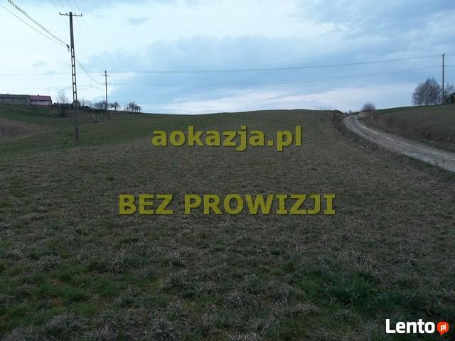 64ar działka rolno budowlana Brzeziny, Wielopole Skrzyńskie