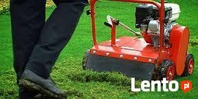 Wertykulacja , Kosznie trawnika
