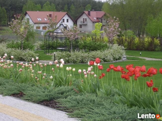 OGRODY KIELCE.Projektowanie i zakładanie ogrodów Kielce