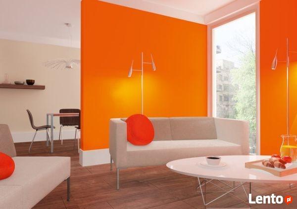 Malowanie mieszkań, wnętrz, elewacji - Zielona Góra