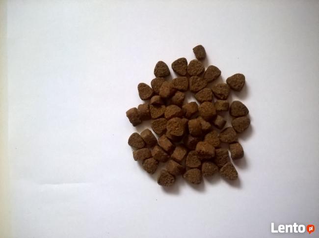 Małe Psy LECKER PREMIUM Wołowina z ryżem 3 kg SPRAWDŹ