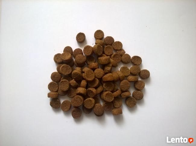 Małe Psy LECKER PREMIUM Drób z ryżem 3 kg SPRAWDŹ