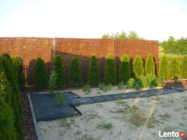 Ogrodzenie wiklinowe Płot wiklinowy Płoty wiklinowe