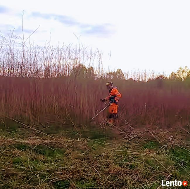 Wycinka koszenie ukladanie kostki montaż ogrodzeń