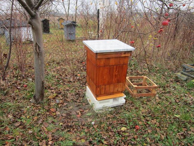 pszczoly ule odklady