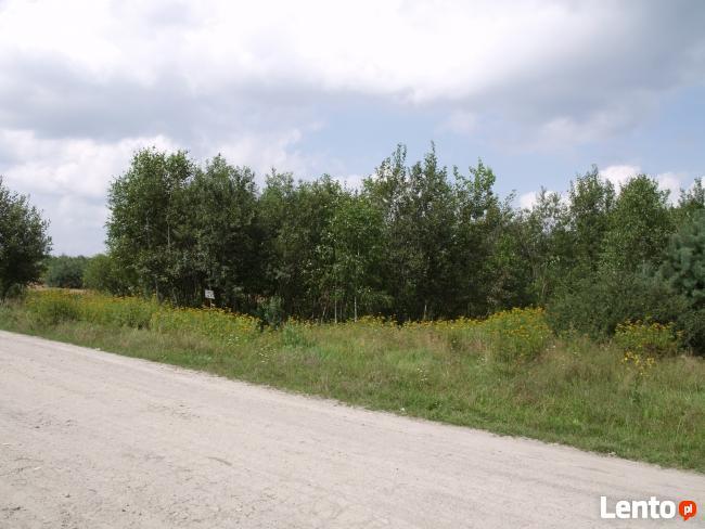 OKAZJA! Tania działka rolna 2400 m kw w Szydłowcu