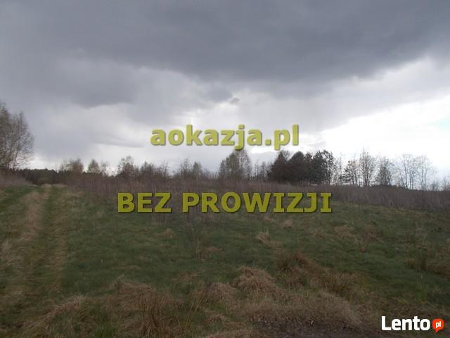 56ar działka rolno budowlana, Kochanówka, Pustków