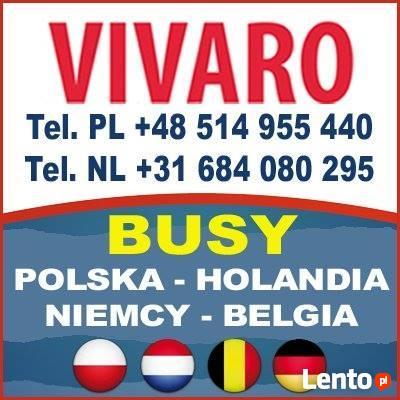 Przewóz osób, gostynin, Transport,,Holandia, Belgia,Niemcy