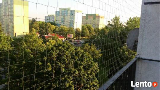 Montaż Siatki na Balkonie dla Zabezpieczenia Kota