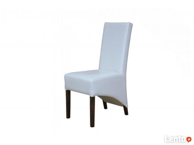 Krzesło CESENA | Furnideco