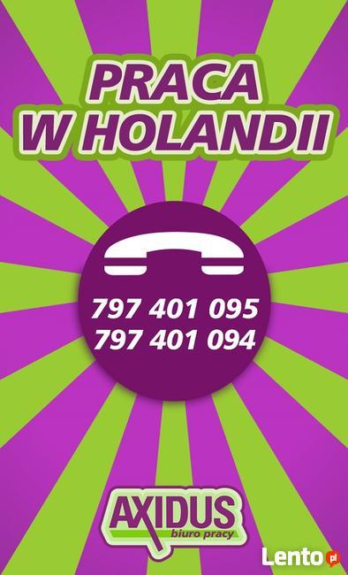 Produkcja w Holandii - Praca od zaraz!