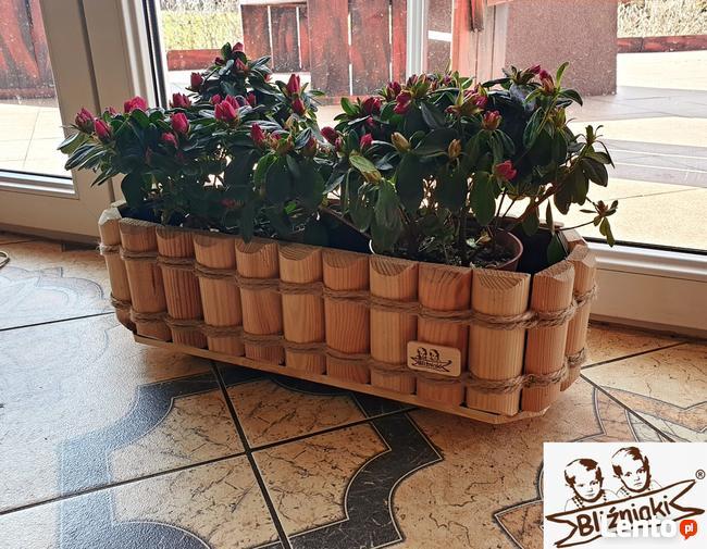 Doniczki Na Kaktusy Rośliny Pokojowe Dekoracyjna Głogów