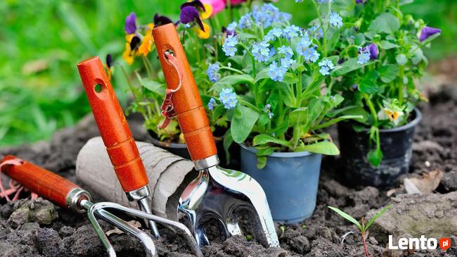 Wiosenny serwis Twojego ogrodu, bezpłatna wycena!!!