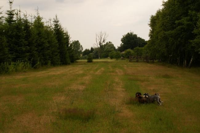 Działka rolna, 3254m2
