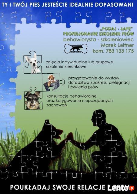 Podaj-Łapę Profesjonalne Szkolenie Psów Przemyśl