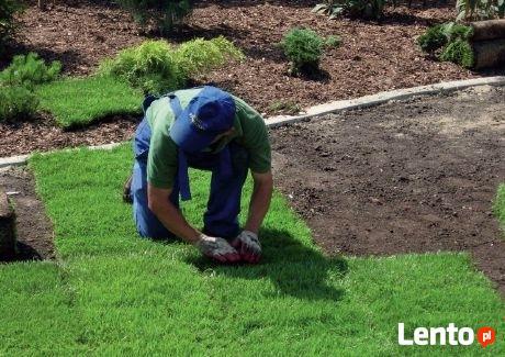 Zakładanie trawnika,niwelacja terenu ,rownanie działki