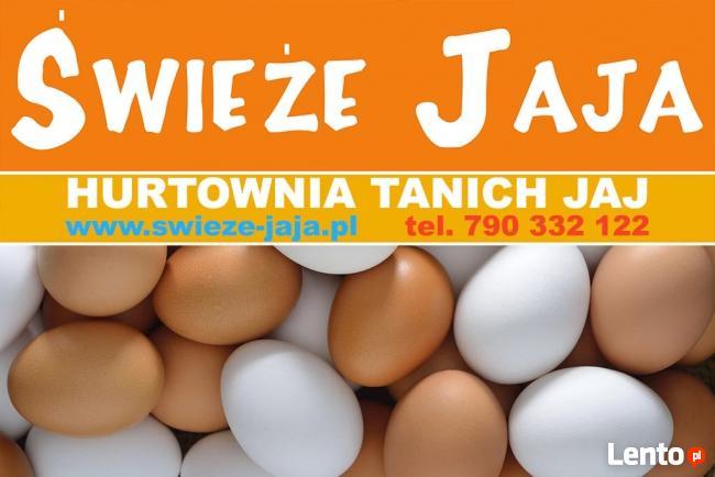 Sprzedaż Jajek,Jaj,Jaja-Masa Jajeczna-Poznań,Opalenica,Buk
