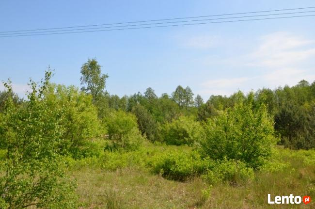 Działka w malowniczej okolicy rzeki i lasów